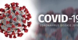 Ακόμη δεν έχει προσδιοριστεί η προέλευση της COVID 19 υποστηρίζουν κορυφαίοι επιστήμονες