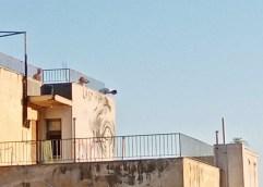 ΠΑΛΙΟ ΝΟΣΟΚΟΜΕΙΟ: Παρέα παιδιών ανέβηκε στην ταράτσα του κτηρίου και επενέβη η αστυνομία