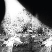 Godspeed You Black Emperor – Asunder Sweet And Other Distress (Constellation)