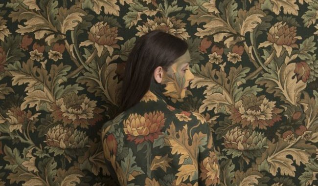 ALBUM REVIEW: Honeyblood - In Plain Sight