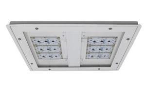 WDL LED Web1