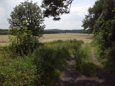 Bauernland 1 - (c) Reinhard Matern