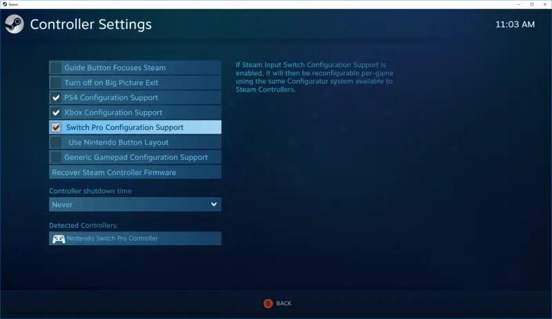 Steam-switch-support
