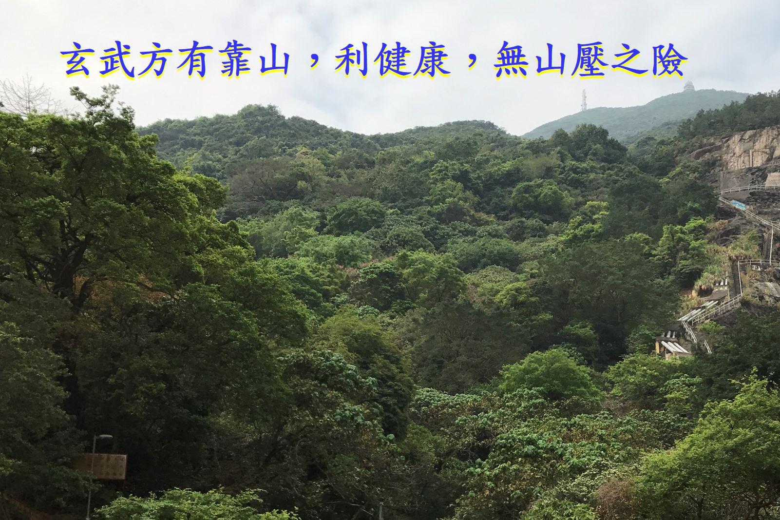 (156) (筲箕灣) 形薈 Lime Gala-風水樓王 - 玄空館