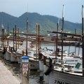 Fischerboote im Hafen von Cala Bona