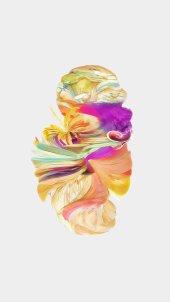 oneplus-5-wallpaper-004