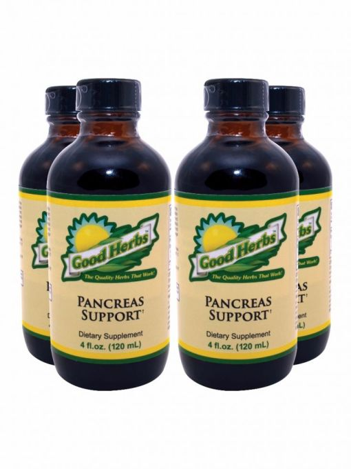 Usgh0027 Pancreas Support 4pack 0814