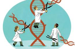 Precision Medicine: The Ultimate Cure?