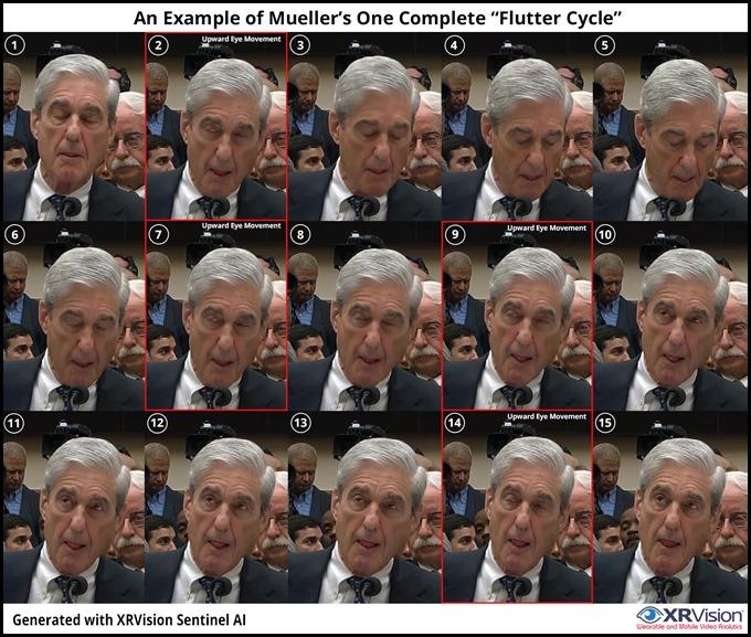 Mueller Seizer Cycle