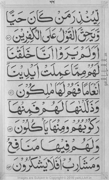 Surah-yaseen-mubeen-7-Page-16-121816