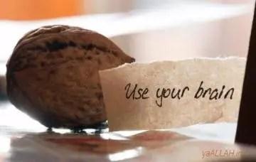 do you have an idea_yaALLAH.in