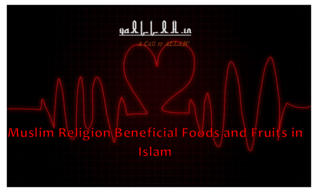 Muslim Religion Beneficial Foods and Fruits in Islam- yaALLAH.in