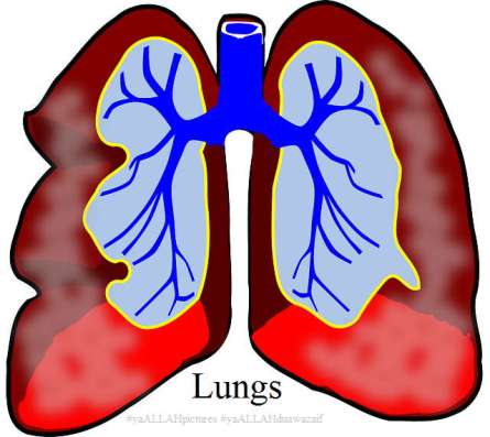 Islamic Dua for Asthma Disease AKA Dama ya ALLAH Website