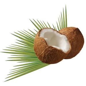 coconut-BigRemedies