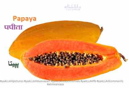 papaya-papita