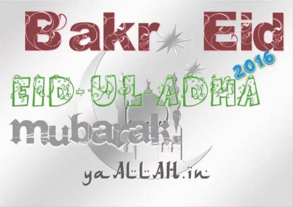 Eid-ul-Adha-bakr-id-azha-feast-mubarak-2016-110816-#yaALLAHpictures