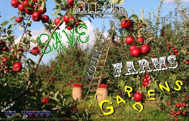 Islamic-agricultures-farming-farms-Muslim-prayers-amal-yaALLAH-110317