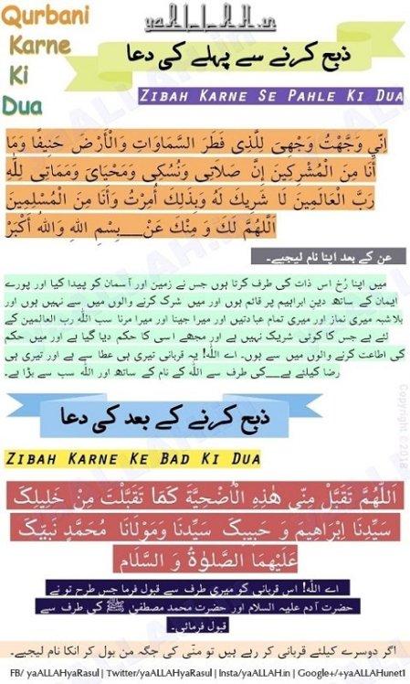 qurbani ki dua in urdu translation