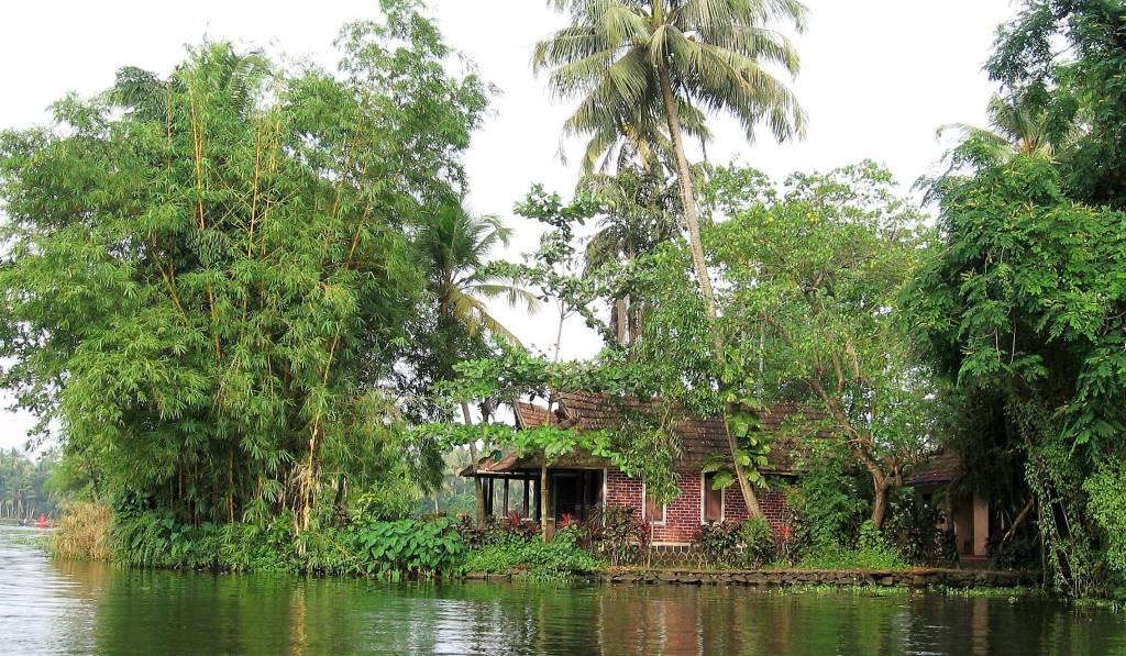 Maison sous cocotiers au bord d'un lac