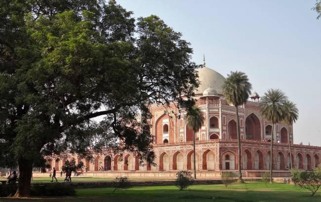 New Delhi mausolée en grès rose derrière un arbre