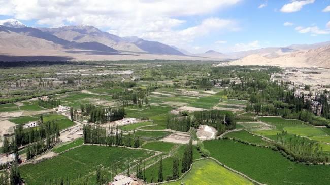 Ladakh vallée cultivée sur fond de montagnes