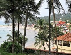 Vue d'une plage derrière des cocotiers avec maisons à droite