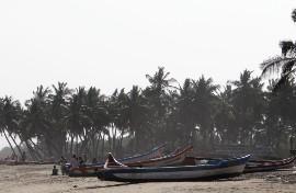 Barques sur une plage avec des cocotiers