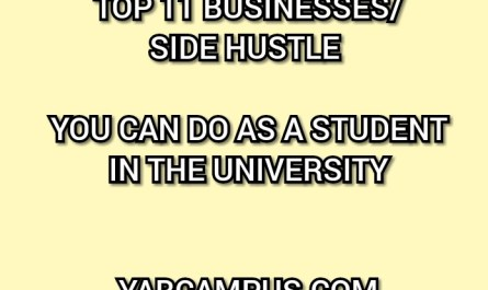 Top Twelve (12) Businesses To Do As A Student In School