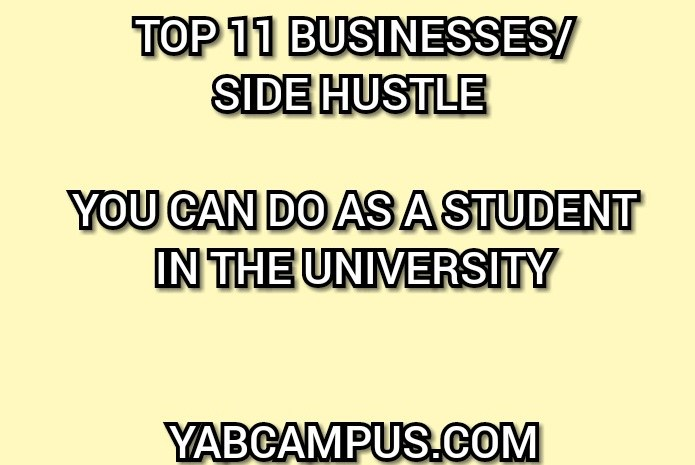 Top Twelve (12) Businesses You Can Do As A Student In School
