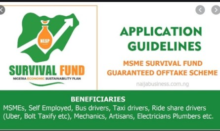 FG's MSME Survival Fund Grant - Survivalfund.ng