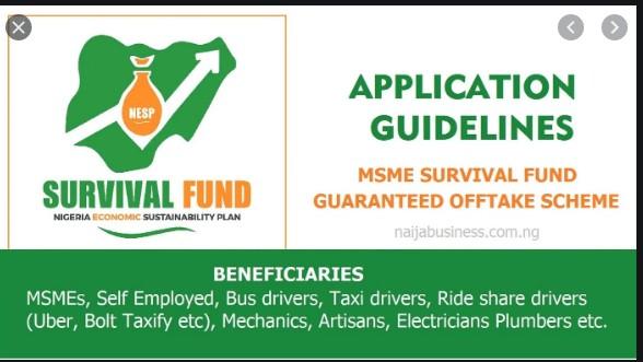 FG's MSME Survival Fund Grant - Survivalfund.ng
