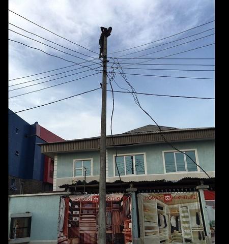 Suicide-Pole-1