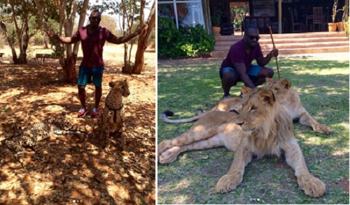 Nollywood Actor, Jim Iyke Pictured Petting Lions And Cheetahs (Photos)