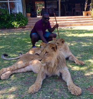 jim iyke petting lions