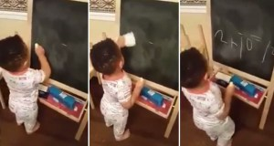 Toddler Solving Mathematical Problem