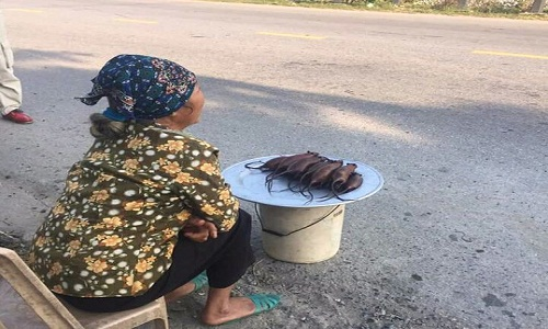 Woman Spotted Selling Tasty Roasted Rats
