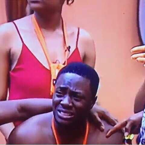 #BBNaija K Brule jumped off the stairs after Anto refused to kiss him.. then Bitto starts crying for him
