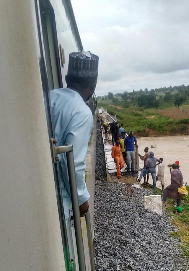 Cows crushed - PHOTOS Cows  Crushed to death by Abuja bound train as 52 die at the spot