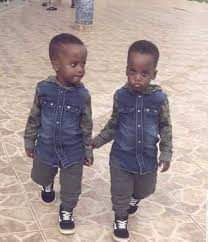 2-year-old twins drown