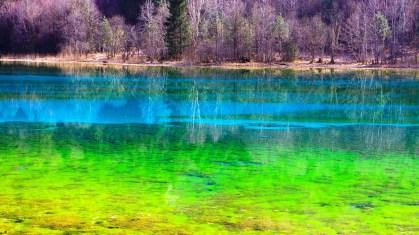 Lacs arc-en-ciel dans la vallée de Jiuzhaigou