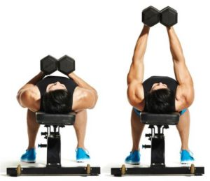 Best Chest Exercises for Building Muscle