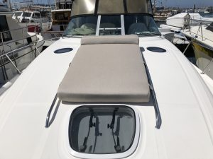Sea Ray 340 Bow Cushion