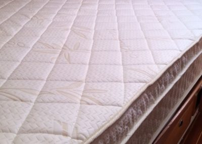 Sea Ray Mattress