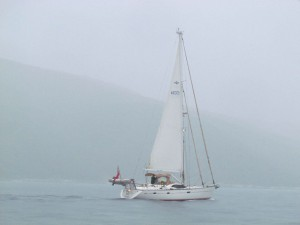Lazy Tern, our crossing companion in the murky morn in the Ithaka Channel