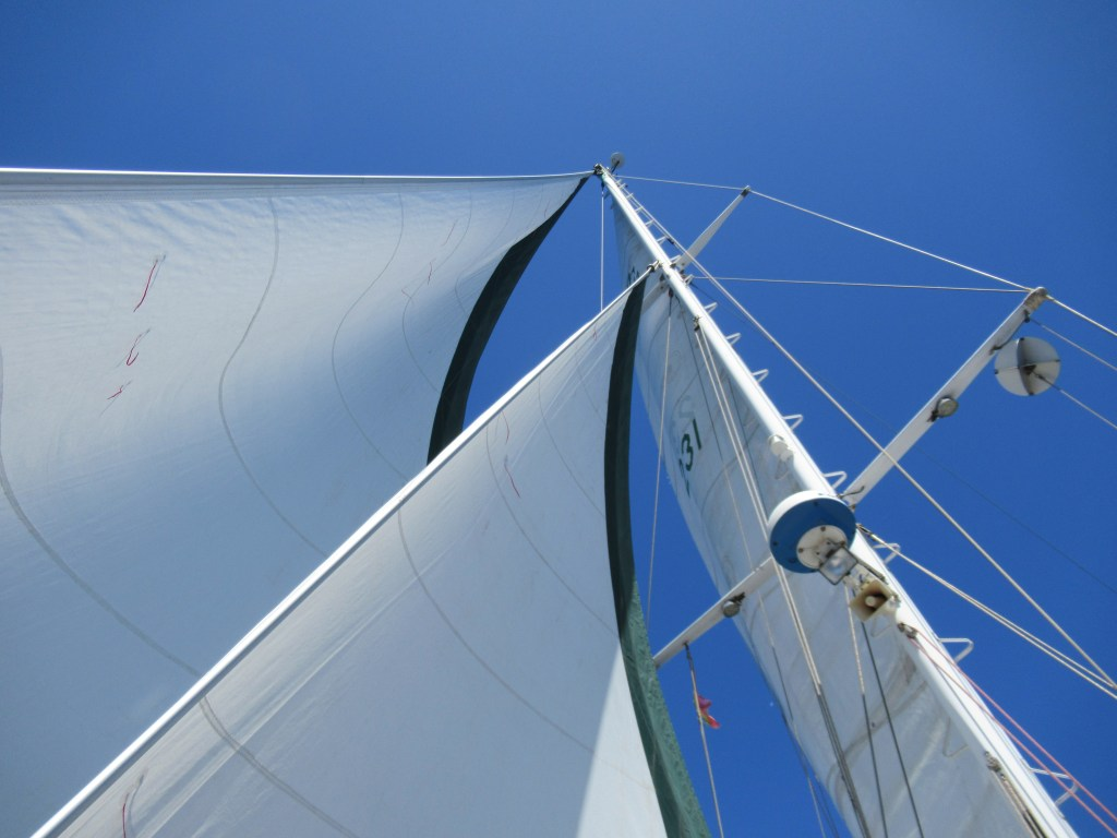 All sails set