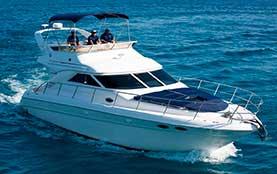 Puerto Aventuras Luxury Yacht Rentals for Private Charter Sea Ray 40 Feet Playa del Carmen Rivera Maya Akumal Tulum Yacht Rentals