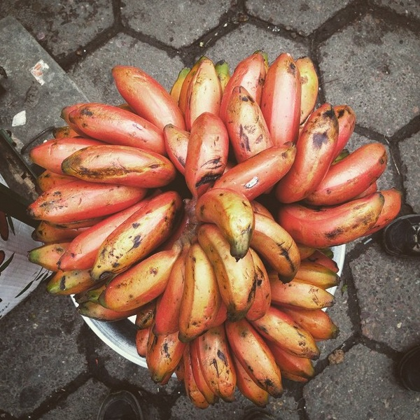 Red Banana in Bolivia