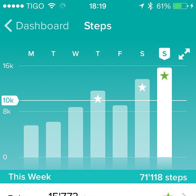 FITBIT daily steps dashboard 2015