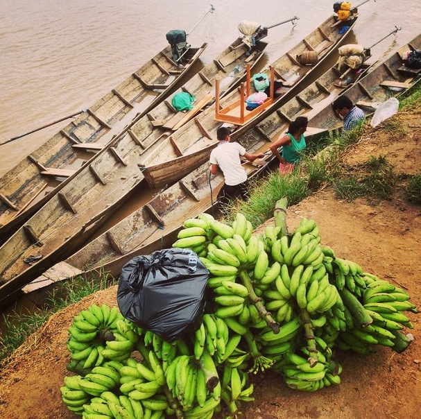 Fresh Bananas from the neighbor valleys of Rurrenabaque