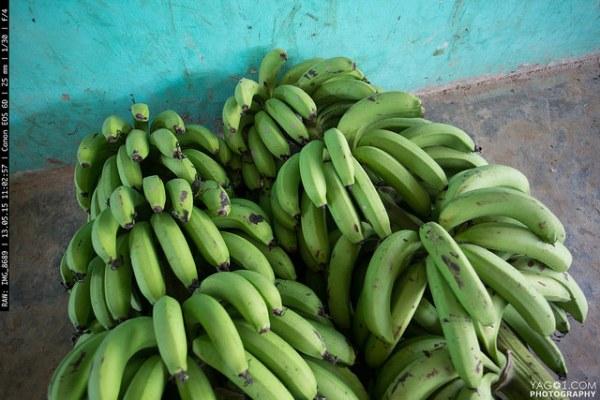 Amazon Banana food